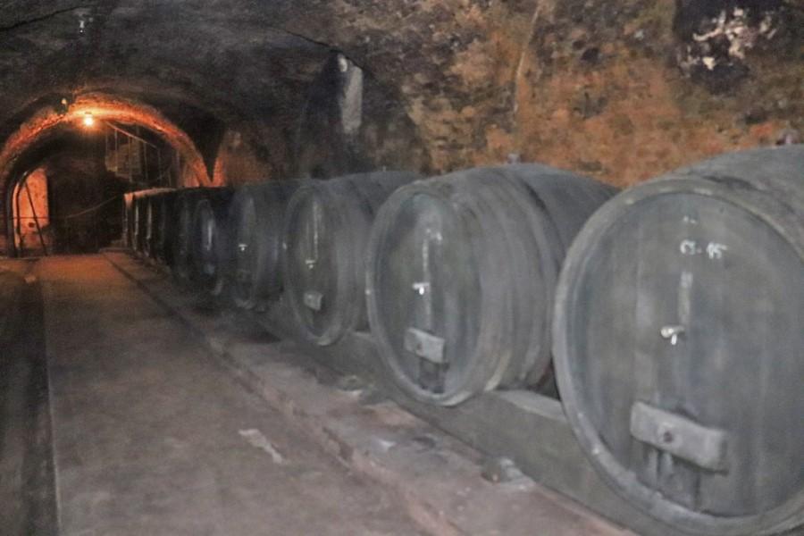 Stari podrum Slatina - 2